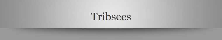Tribsees
